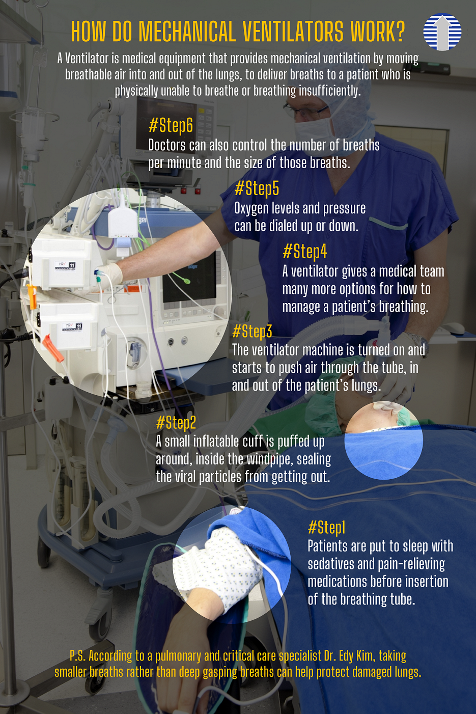 HOW DO MECHANICAL VENTILATORS WORK